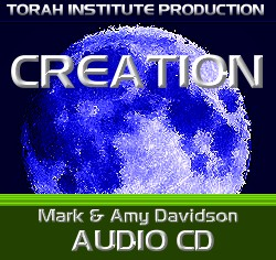 MARK AND AMY DAVIDSON: Creation Musical CD