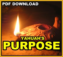 Yahuah's Purpose pdf download