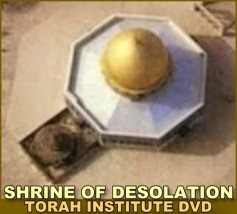 SHRINE of Desolation DVD