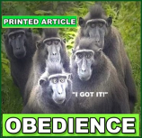 OBEDIENCE Printed Article