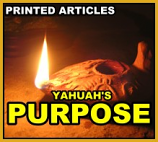 Yahuah's Purpose - 10 copies