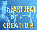 Heartbeat of Creation DVD