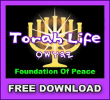 Torah Life pdf download